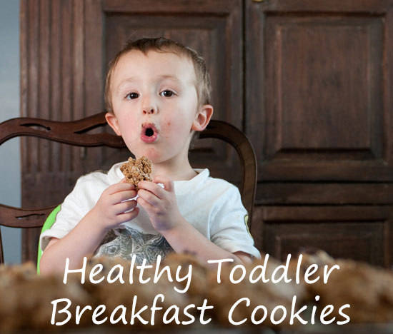 Healthy Oatmeal Breakfast Cookies — Toddler Friendly Food Tuesdays